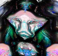 SOLLOZO EN EL ALTIPLANO (HORACIO JOSE CAROL LUGONES) Tags: fiesta y contemporaryart abstracto rococo bizarro neutro practico indefinido iridiscente emblematico colourartaward fantasioso impredecible art2010 flamingpearfilterswereused personallibre acorazonado digitalespiritual