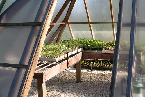 School Farm: Pyramid Greenhouse