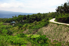 Nice drive... (Marks Photography) Tags: philippines sanjose negrosoriental sibulan nationalhighway amlan markvinton canons95