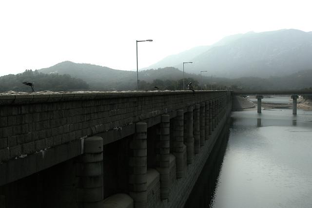 大欖涌水塘