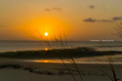 DSC_0008 (anascto) Tags: maranhao saoluis brasil brazil nordeste listoral epigao pontadaareia silhueta silhouete