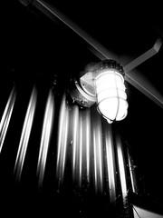 Light in the dark (nikitalesnik) Tags: phone iphone6 iphone lightbulb lamp grayscale light white black