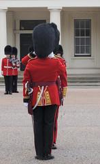 Img555109nx2 (veryamateurish) Tags: unitedkingdom british military army london wellingtonbarracks changingoftheguard publicduties ceremonial guardmounting newguard footguards householddivision grenadierguards