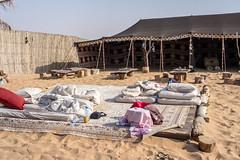 Dubai desert. Camp (Tigra K) Tags: dubai unitedarabemirates ae 2013 fence wall wood