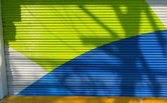 Mes illusions donnent sur la cour (Robert Saucier) Tags: mexico mexicocity mur wall vert green bleu blue blanc white orange img9037