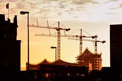 Musik für die Augen (Paul mit dem Pinscher) Tags: silhouette backlight germany crane hamburg baustelle architektur hafencity gegenlicht philharmonie norddeutschland scherenschnitt elbphilharmonie abenlicht baukräne