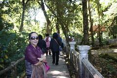 Doi Inthanon (5) (radioink) Tags: trip holiday point thailand walk north trail jungle northern chiangrai highest doi inthanon