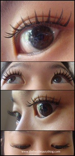 Photos of ARDELL lashes