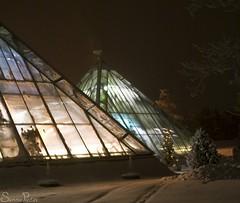 20101214_11071b (Fantasyfan.) Tags: winter house snow cold topv111 tag3 taggedout finland garden dark botanical lights tag2 tag1 pyramid oulu 20c fantasyfanin