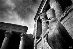 Horus (katepedley) Tags: africa blackandwhite bw white black building monochrome statue rock stone canon river temple carved interestingness ancient worship north columns egypt middleeast arabic nile east explore egyptian falcon arabia limestone horus gods 5d blocks middle civilisation 1740mm deity hieroglyphics edfu diorite idfu