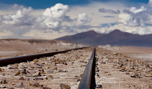 Tracks In the Altiplano #3