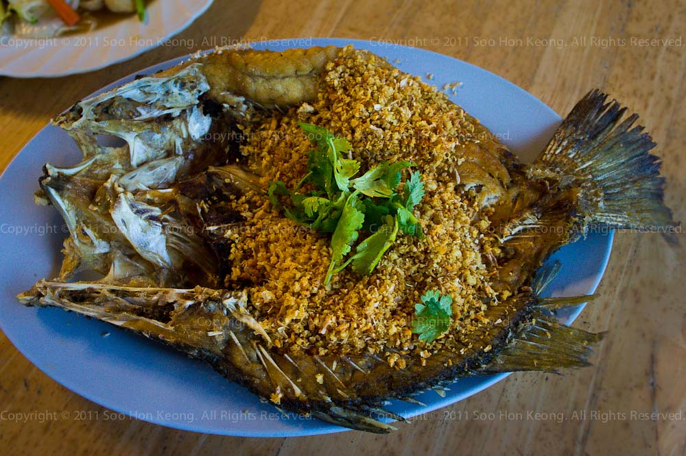 Fried Fish Garlic @ Cha Am, Thailand