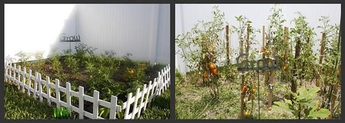 GardenBA