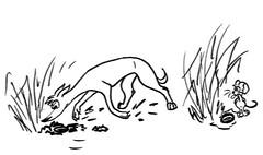 Comic-Whippet Mausloch