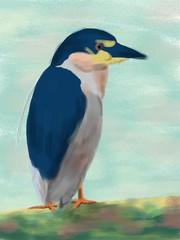 Black-crowned Night Heron  (Tadaoki) Tags: bird animal digital painting brushes  fingerpainting     ipadart