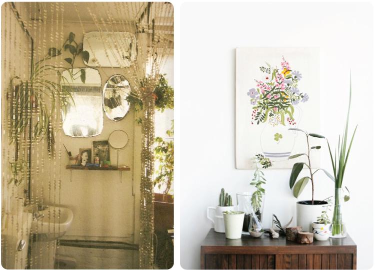 House Plants (2)