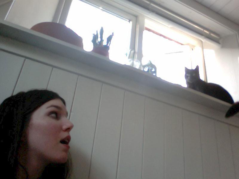 kattttt