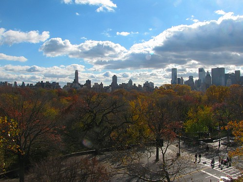 Central Park and NYC Skyline from AMNH