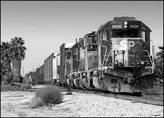 The Anaheim Hauler in Buena Park (greenthumb_38) Tags: california railroad blackandwhite bw train blackwhite sp duotone locomotive orangecounty buenapark southernpacific espee sd40 pro90 canonpro90is sp8636 jeffreybass