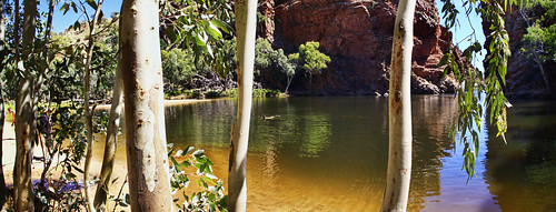 Ellery Creek Water Hole by Georgie Sharp
