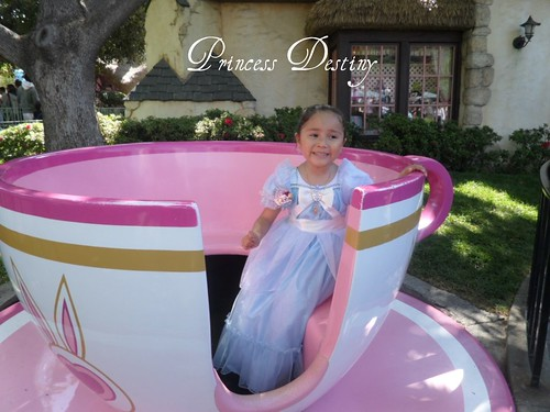 Princess Des
