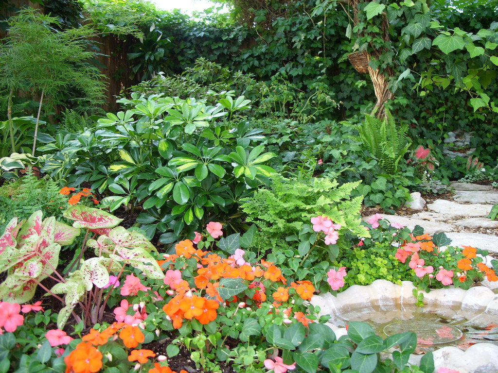 Entrance to the shade garden