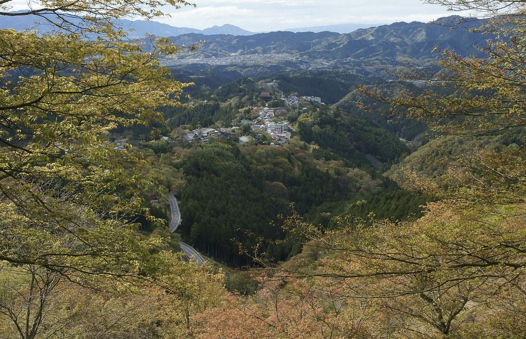 Yoshino 1