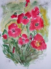 bouquet de coquelicots (brigitte.noelle) Tags: fleurs aquarelle coquelicots