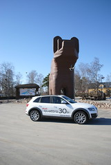 Audi Q5 i Sveg hos björnen