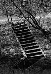 Stairs for Jesus (sollyth) Tags: blackandwhite bw water monochrome stone stairs blackwhite nikon poland polska krakow monochromatic crakow kraków cracow quarry woda liban cracovia krakau d300 schody kamieniołom czarnobiałe krakoff monochromia monochromatyczny nikkorafsdx18200f3556gifedvr
