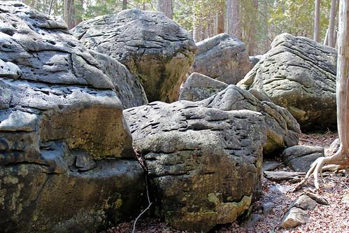 Jones Falls Mini-hike - Boulders