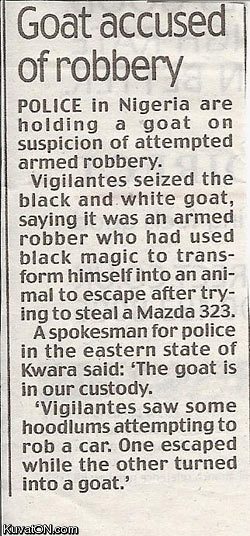 goat_accused_of_robbery