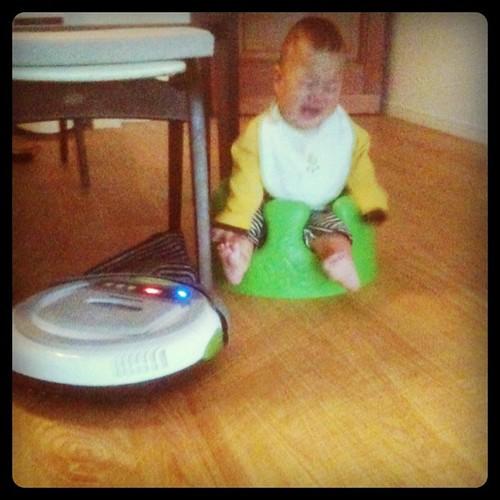 お掃除ロボットに怯え、絶叫する二號。