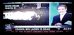Osama bin Laden Killed; A Snapshot in time