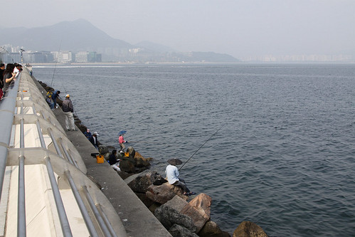 Fishing from the Tolo Harbour promenade at Ma On Shan