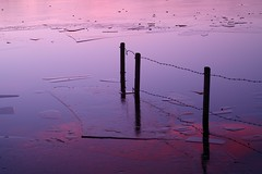 Frozen promises of freedom (Fly bye!) Tags: winter sunset lake ice water fence frozen twilight icefloes barbedwire posts mere fencepost marbury bigmere