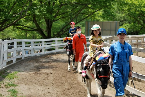 rode a pony
