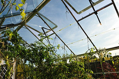 Greenhouse Heating and Ventilation Systems