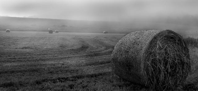 IMAGE: http://farm6.static.flickr.com/5181/5773371561_abfbbeb840_z.jpg