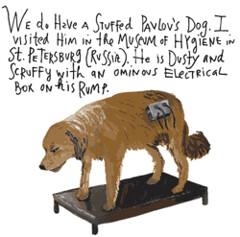 maira kalman pavlov's dog