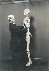 Skeleton (Tyne & Wear Archives & Museums) Tags: museum children skeleton see blind touch objects collections access oldphotographs adults northeast oldphotos sessions newcastleupontyne sunderland curator tyneandwear twam sunderlandmuseum tyneandweararchivesandmuseums johnalfredcharltondeas charltondeas handlingsessions