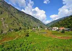 Taluka Village (Har-ki-Dun Trek 108) (Sanyam Bahga) Tags: india mountains uttaranchal himalaya 1024 garhwal uttarakhand d7000