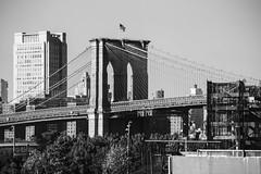 Brooklyn Bridge (Alejandro Ortiz III) Tags: 6d alejandroortiziii alex alexortiz allrightsreserved brooklyn canon canoneos copyright2016 copyright2016alejandroortiziii digital eos lightroom lightroom3 newjersey newyork newyorkcity rahway shbnggrth alexortizphotogmailcom
