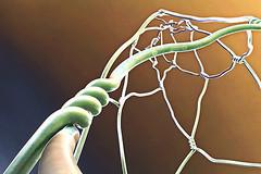 synapses (Dieter Drescher) Tags: synapsen synapses skulptur sculpture barcelona spanien spain espana katalonien catalunya vila olimpica draht wire verfremdet alienated distorted braun brown grn green photoshop experiment falschfarben falsecolours dieterdrescher