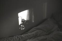 cat (Trixi Skywalker) Tags: black white canon av1 kodak tmax400 trix 400 stockholm sweden sverige 50mm 18 window camera analog analogue