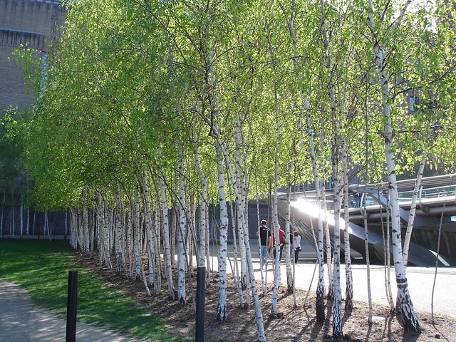 London April 2011 043