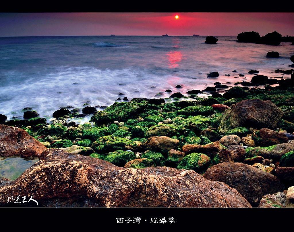 ++西子灣.綠藻季++