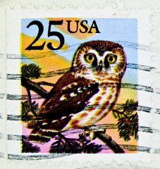 stamp USA 25c us postage owl postage 25 cent марки США сова Eule Kauz sello búho USA francobolli gufo poste timbre hibou stamps United States of America selos USA coruja スタンプ アメリカ フクロウ postzegel Verenigde Staten USA uil  우표 미국 올빼미  طوابع  الولايات المتحدة