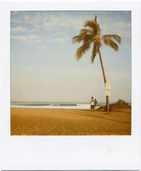. (Rebecca...) Tags: holiday beach polaroid sx70 hawaii surf oahu surfer watching palmtree haleiwa 600filmwithblendfilter