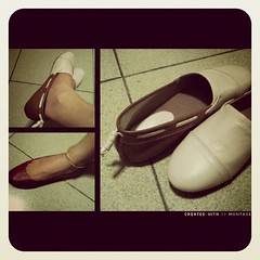 My Posh Pocket Shoes